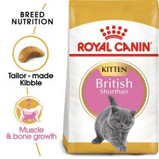 Royal Canin British Shorthair Kitten - 2 kg