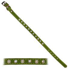 Halsband für den Hund mit Verzierung - grün - 1,2x28-33,5 cm