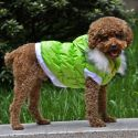 Hundejacke mit abnehmbarer Kapuze - grün, XL