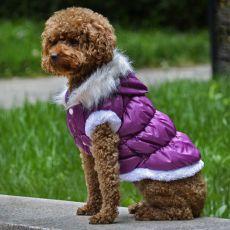Hundejacke mit abnehmbarer Kapuze - lila, XS