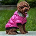 Hundemantel mit schwarzen Bündchen- pink, XL