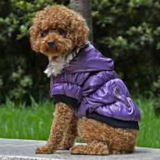 Hundemantel mit schwarzen Bündchen - violett, XS