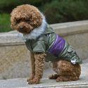 Hundejacke mit Aufnäher - grün, L
