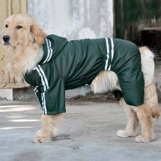 Reflektierende Regenjacke für große Hunde - dunkelgrün, 3XL
