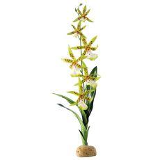 Exo Terra Pflanze für Terrarium - Spider Orchid, 45cm