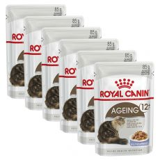 Royal Canin AGEING + 12 - Beutel 6 x 85g