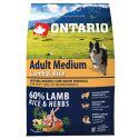 ONTARIO Adult Medium Lamb & Rice 2,25kg