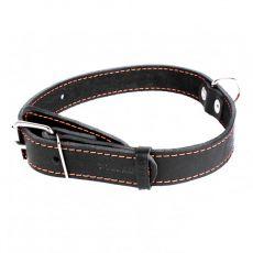 COLLAR Lederhalsband für Hunde - 38 - 50cm, 25mm - schwarz