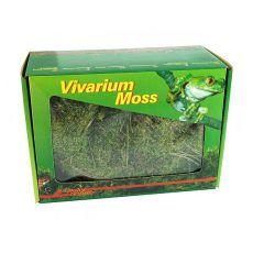 Moos für Terrarium Vivarium Moss - 150 g