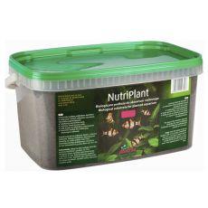 NutriPlant Substrat für Aquarienpflanzen, 3L