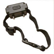 Zusatz-Halsband für elektrischen Zaun iTrainer W227B