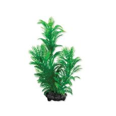 Tetra Aquarienpflanze - Green Cabomba S, 15cm