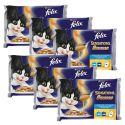 Felix Sensations Sauces - Fischvariationen in Soße, 6x400g