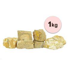 Steine für Aquarium Petrified Stone S - 1kg