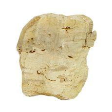 Stein Petrified Stone M 13 x 9 x 15 cm für Aquarium