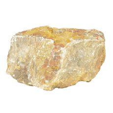Stein Petrified Stone M 16 x 13 x 9 cm für Aquarium