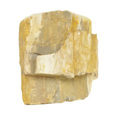 Stein Petrified Stone M 13 x 7 x 12 cm für Aquarium