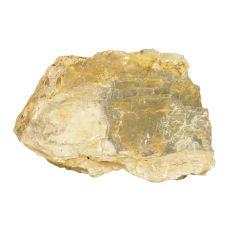 Stein Petrified Stone M 21 x 7 x 13 cm für Aquarium