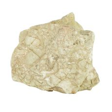 Stein Grey Luohan Stone M 16 x 8 x 16 cm für Aquarium