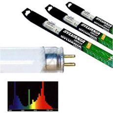 Leuchtstoffröhre GRO-LUX 300mm / 8W T5
