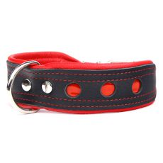 Reflektierendes Halsband Neo, schwarz - rot 4 cm x 33 - 41 cm