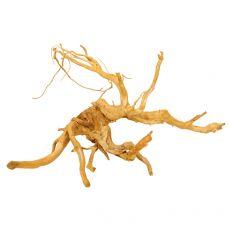 Aquarium Wurzel Cuckoo Root - 58 x 44 x 35 cm
