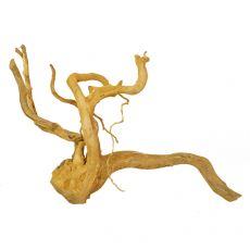 Aquarium Wurzel Cuckoo Root - 65 x 32 x 43 cm