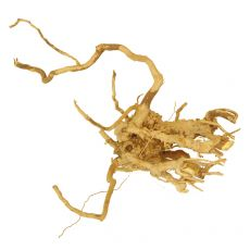 Aquarium Wurzel Cuckoo Root - 19 x 11 x 14 cm