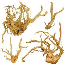 "Aquarium Wurzel Cuckoo Root ""PREMIUM"", 20 - 40 cm"