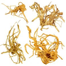 "Aquarium Wurzel Cuckoo Root ""EXCLUSIV"" 20 - 50 cm"