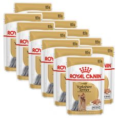 ROYAL CANIN ADULT YORKSHIRE 12 x 85 g - Beutel