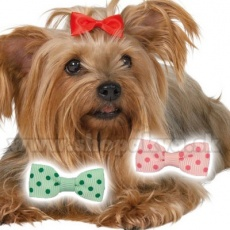 Hundeschleife gepunktet 3,5 cm
