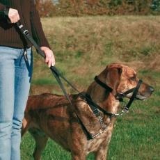 Trainingsgeschirr für Hunde - S, 22 cm