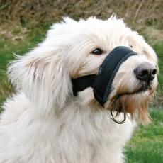 Maulschlaufe für Hunde - XXL