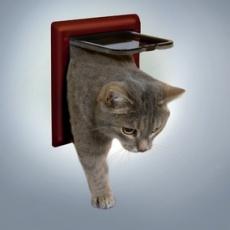Türchen für Katzen mit zwei Positionen - braun