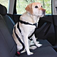Hundesicherheitsgeschirr für Auto - XL, 80 - 110 cm