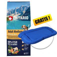 ONTARIO Adult Medium 7 Fish & Rice 12kg