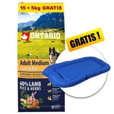 ONTARIO Adult Medium Lamb & Rice 15+5kg GRATIS+ GESCHENK