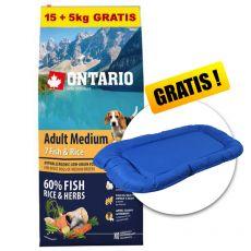 ONTARIO Adult Medium 7 Fish & Rice 15+5kg GRATIS+ GESCHENK