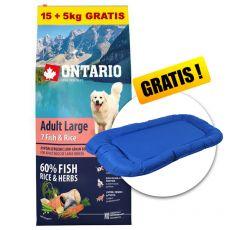 ONTARIO Adult Large 7 Fish & Rice 15+5kg GRATIS+ GESCHENK