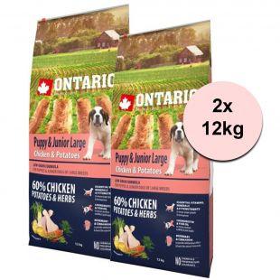 ONTARIO Puppy & Junior Large - chicken & potatoes 2 x 12 kg