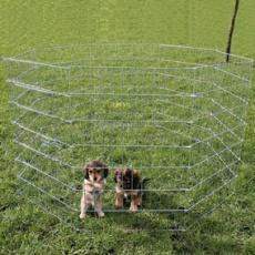 Auslauf für Welpen und kleine Hunde