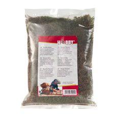 Natürliches getrocknetes Moos - Terrano natural moss