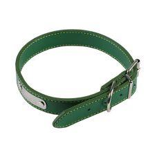 Lederhalsband für Hunde - grün, 30 cm