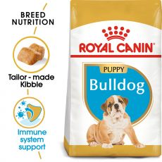 ROYAL CANIN ENGLISCHE BULLDOGGEN JUNIOR - 12 kg