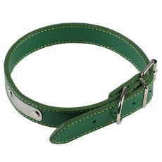 Lederimitat Halsband für Hunde - grün, 35 cm