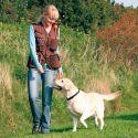 Dog Activity Trainingsweste - braun, XL