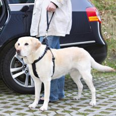 Sicherheitsleine für Hunde für Auto - schwarz, 27cm