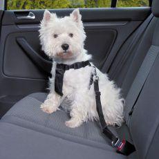 Autosicherheitsgeschirr für Hunde - XS, 20 - 50 cm