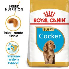 ROYAL CANIN COCKER JUNIOR - 3 kg